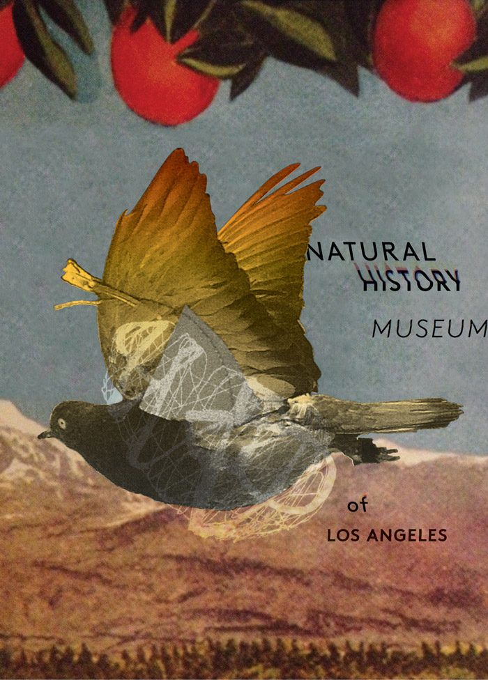 Natural History Museum postcard